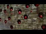 Задорновости (выпуск 4) Гарри Польский. Новости шоу бизнеса, спорта. О футболе, евро 2012 г. киноримэйки - старые фильмы на новый лад. из мультика вырезали все кадры с волком, заменив их фрагментами из других фильмов идеи украденные у русских реклама по ходу фильмов. Смешные новости, оригинальный монтаж, озвучка. Шутки о  политике, знаменитостях и звёздах