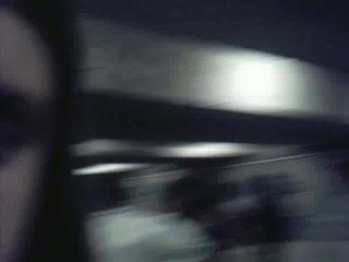 17.11.2006_(den studenta)